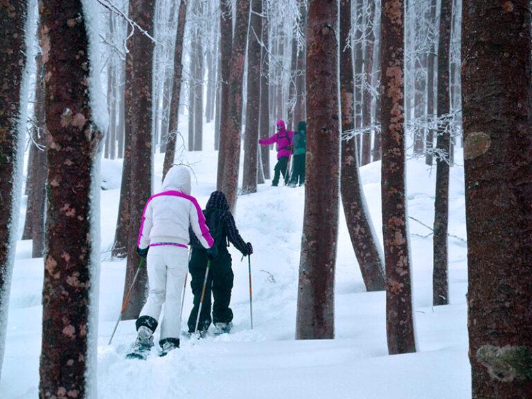 Turismo invernale Monte Amiata
